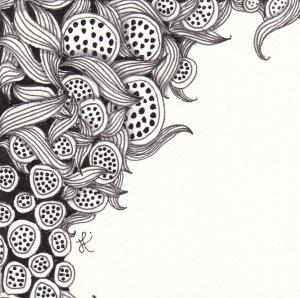 Lotus Pods and Enyshou